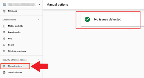 Manual-Actions-No-Issues-Detected